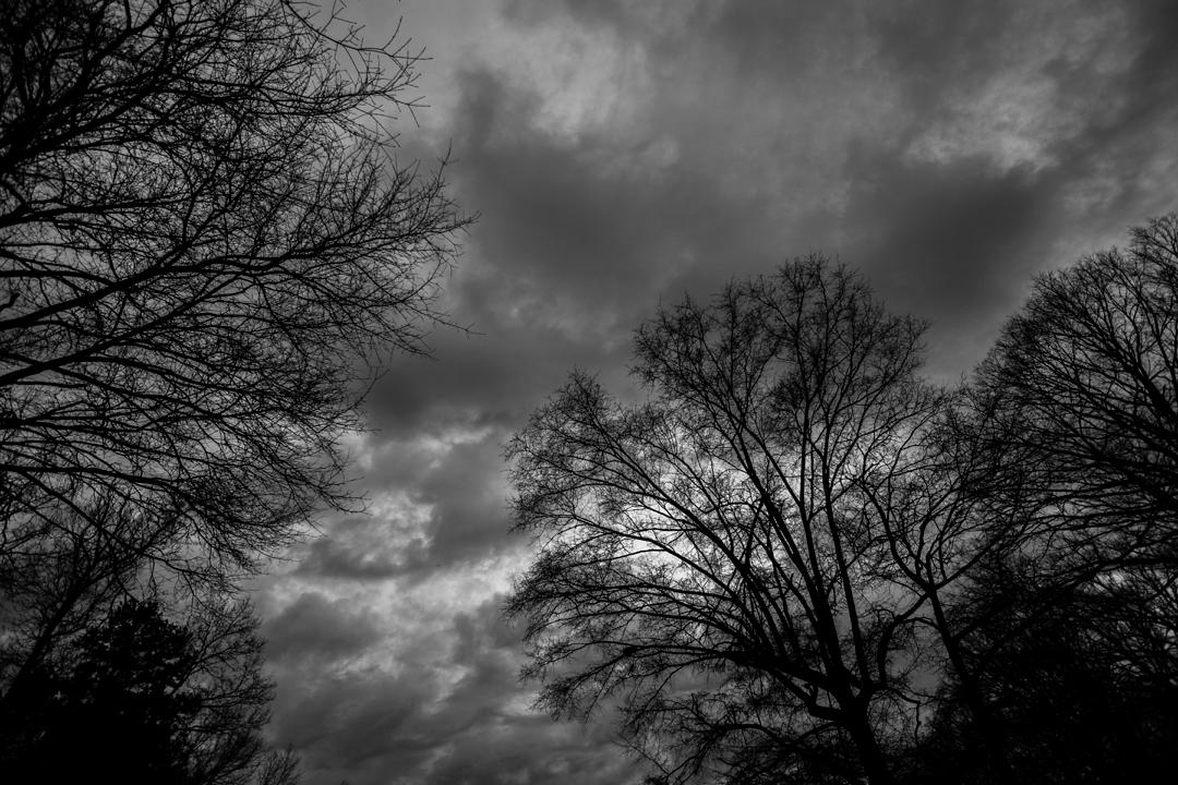 gray day.jpg